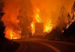 متابعة أخبار الحرائق في غلاف غزة  والمواجهات على حدود القطاع