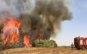 إخماد الحرائق المندلعة في غلاف غزة بفعل البالونات الحارقة