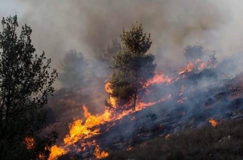 كان: حرائق ضخمة تشتعل في مستوطنات الضفة