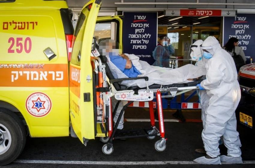الشرطة الإسرائيلية تحقق في إطلاق النار على كلب بالطيبة